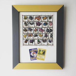 Framed Pokémon