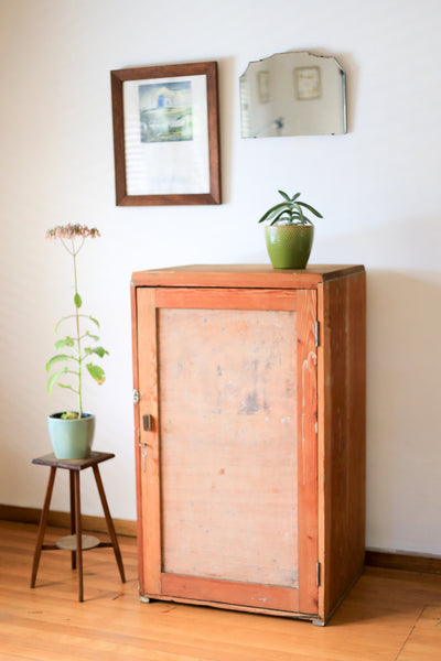 Small Rustic Wardrobe