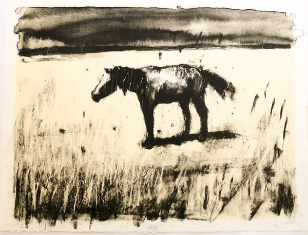 'Horse' by Johann Louw - Two Colour Lithograph