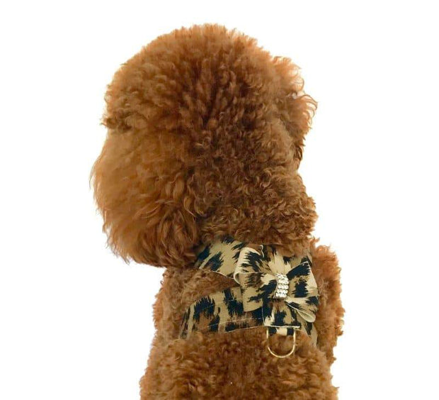 Hollywood Bow Dog Harness, Leopard