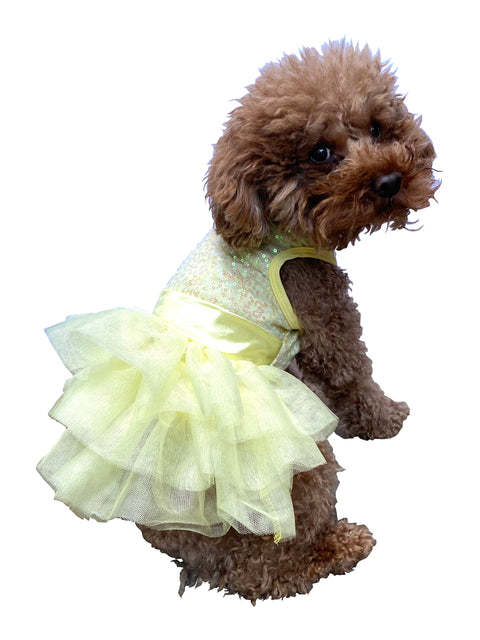 Zsa Zsa Dog Tutu Dress in Lemon Yellow
