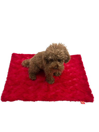 Blanket, Bella Red 2 SIZES!
