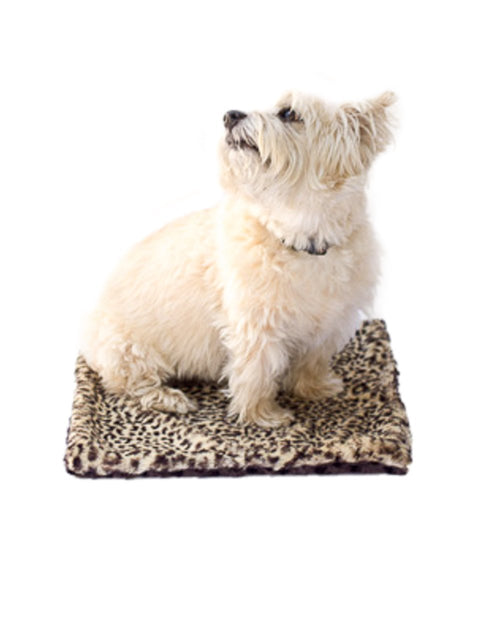 Carrier Square Blanket, Brown Cheetah