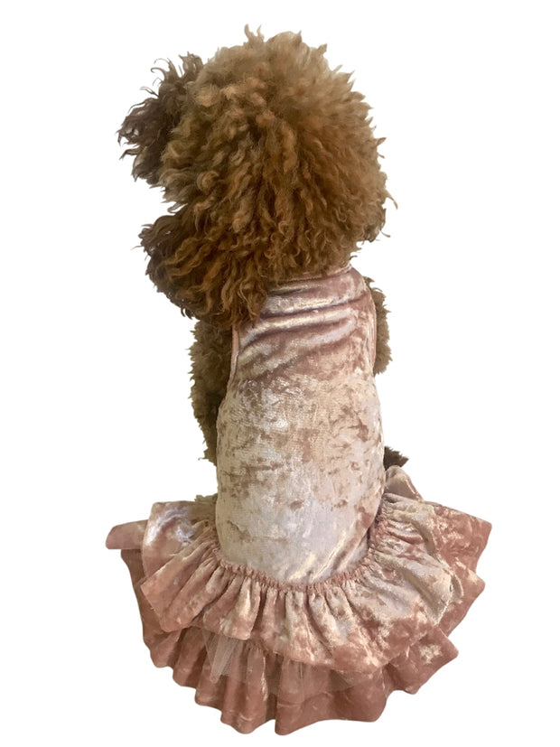 Crushing on YOU Metallic Velvet Dog Dress, Blush
