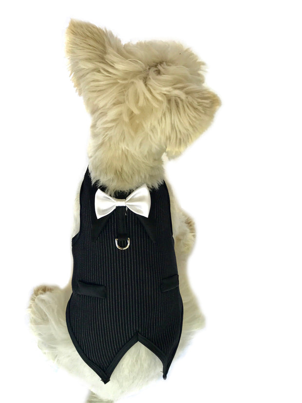 The Dogfather Pinstriped Doggie Tuxedo