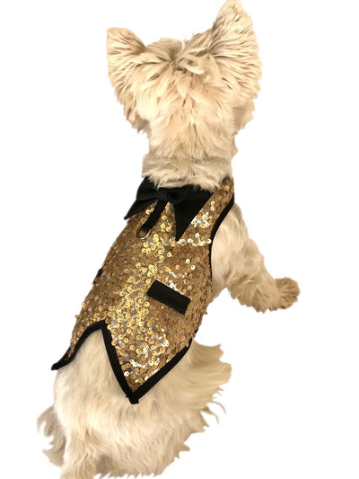 The Gentleman's Doggie Tuxedo, Lt. Gold Sequins