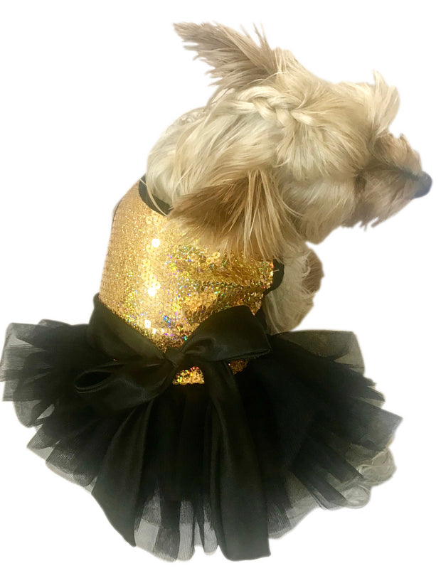 Gold Stardust Tutu Dress