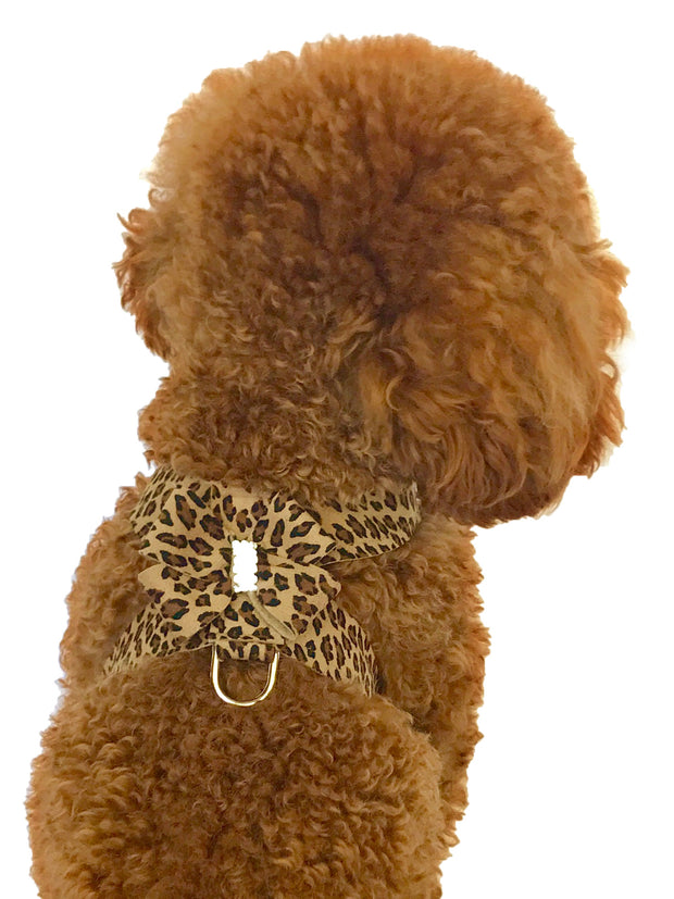 Hollywood Bow Dog Harness, Cheetah