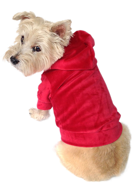 Velour Pullover Hoodie, Red