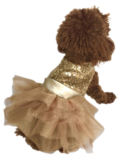 Marilyn Dog Tutu Dress, Lt. Gold Sequins