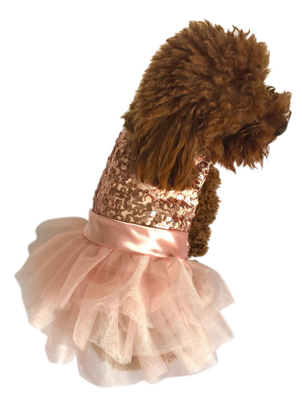 Marilyn Dog Tutu Dress, Rose Gold Sequins