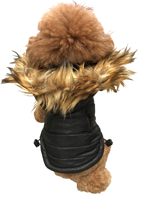 Ski Bunny Puffer with detachable hood, Shiny Black