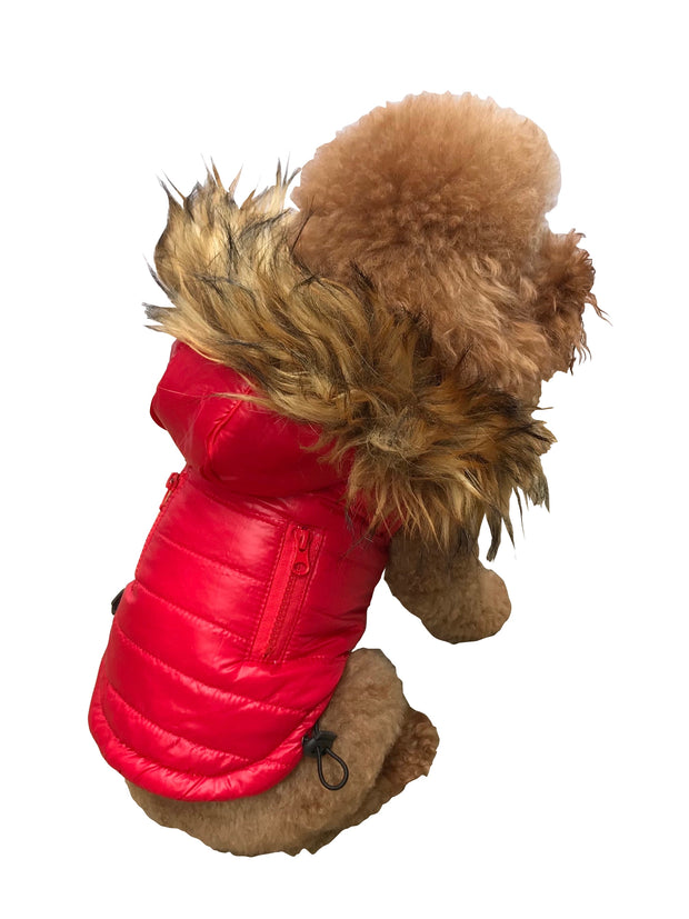 Ski Bunny Puffer with detachable hood, Shiny Red