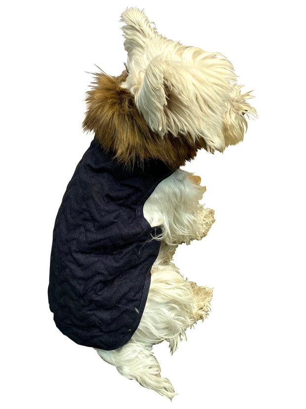 Ziggy Quilted Denim Dog Coat