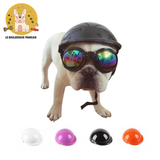 Casque protection Bouledogue Français