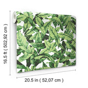 Palm Peel and Stick Wallpaper green dimensions