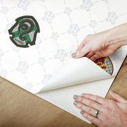 Harry Potter House Crest Peel and Stick Wallpaper peel