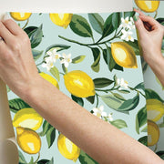 Lemon Zest Peel and Stick Wallpaper blue hang