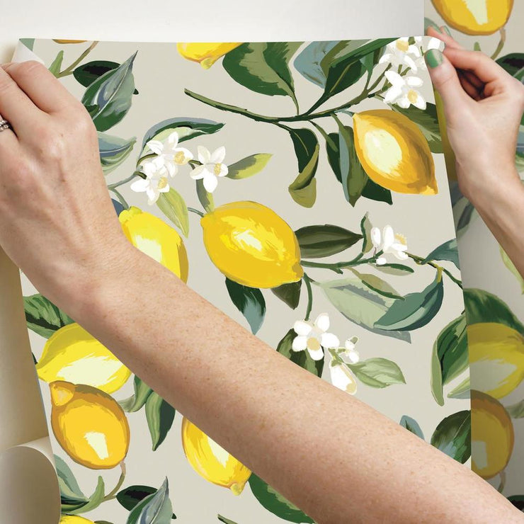 Lemon Zest Peel and Stick Wallpaper beige hang
