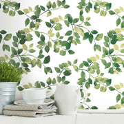 Finlayson Latvus Peel and Stick Wallpaper green roomset