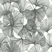 Gingko Leaves Peel and Stick Wallpaper black