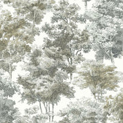 Old World Trees Peel and Stick Wallpaper grey