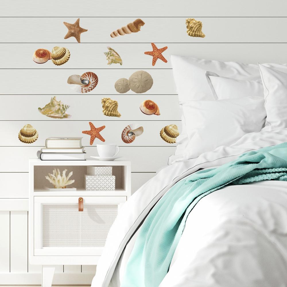 Seashells peel and stick wall decals