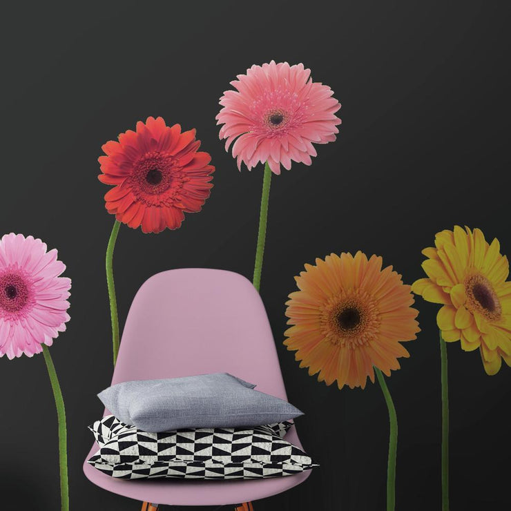 Gerber Daisies Giant Wall Decals roomset 3