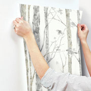 RMK9047WP Birch Tree Peel And Stick Wallpaper Is Easy To Install