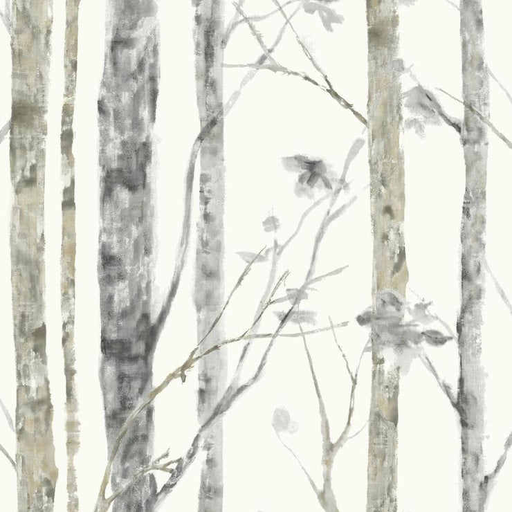 RMK9047WP Birch Tree Removable Wallpaper