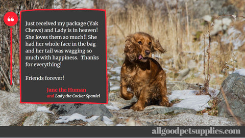 Testimonial about Yak Chews for small dogs by www.allgoodpetsupplies.com