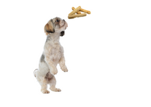 Load image into Gallery viewer, Dog Treats -  Yak Chews  for Small Dogs and Pups