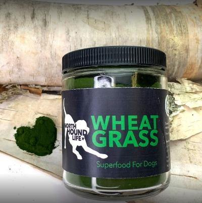 Superfoods for dogs - Wheat Grass