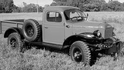 1946-1952 Dodge Powerwagon Undrilled BedWood®