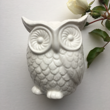 Load image into Gallery viewer, White Ceramic Owl Bank Ornament