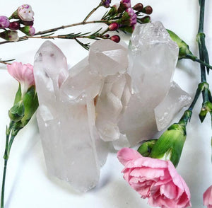 Clear Quartz Crystal Cluster - The Munro