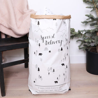 Special Delivery Large Christmas Gift Bag