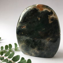 Load image into Gallery viewer, Ocean Jasper Standing Free Form Crystal - The Munro