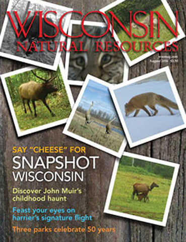 Wisconsin Natural Resources - Print Magazine