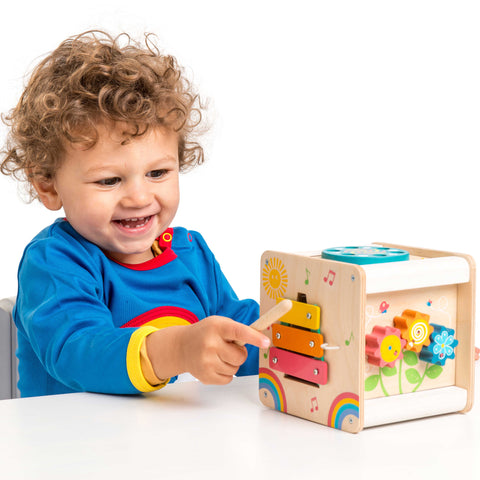 Playtoys online toy store wooden toys educational toys sensory development