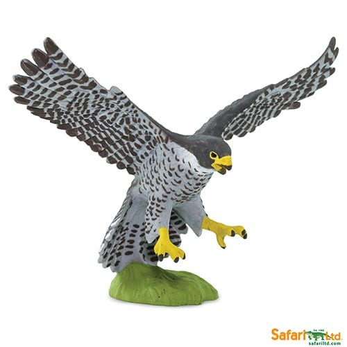 Safari Ltd Peregrine Falcon (Wings of the World Birds) 100094