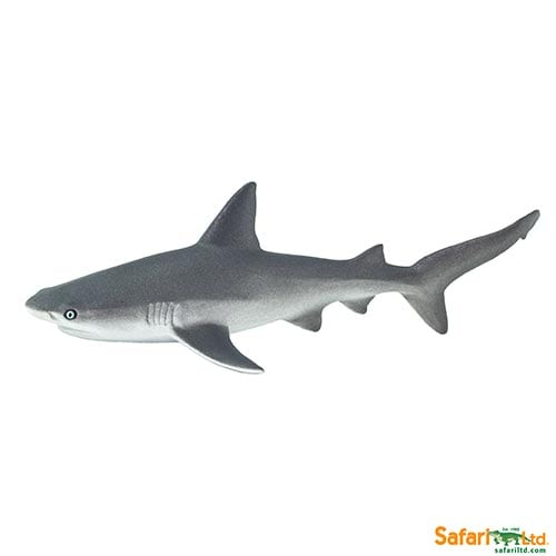 Safari Ltd Gray Reef Shark (Wild Safari Sea Life) 100099