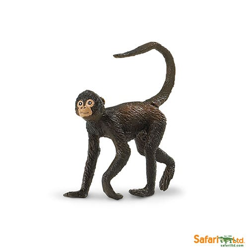 Safari Ltd Spider Monkey (Wild Safari Wildlife) 291629