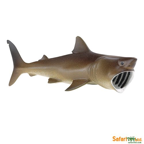 Safari Ltd Basking Shark (Wild Safari Sea Life) 223429