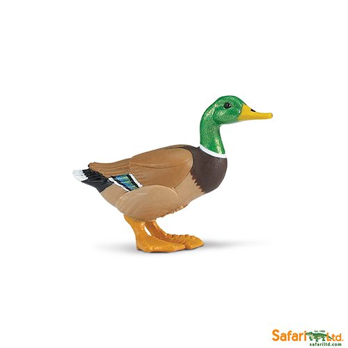 Safari Ltd Duck (Safari Farm) 233229