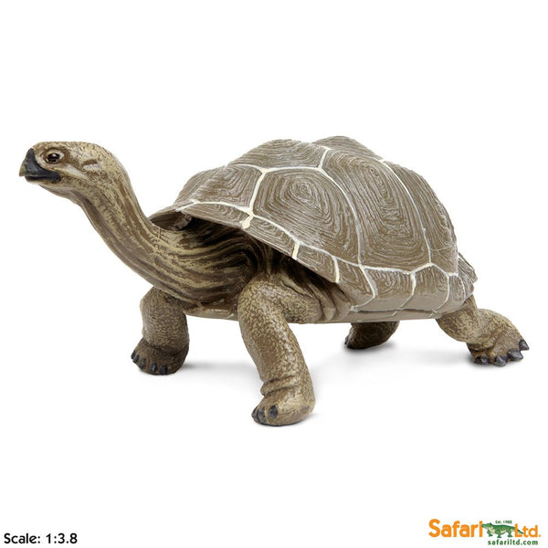 Safari Ltd Tortoise Incredible Creatures 260729