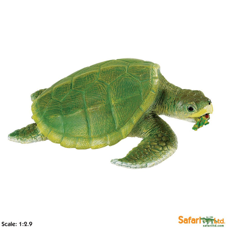 Safari Ltd Kemps' Ridley Sea Turtle 262429