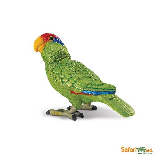 Safari Ltd Green cheeked Amazon Parrot (Wings Of The World Birds) 263729