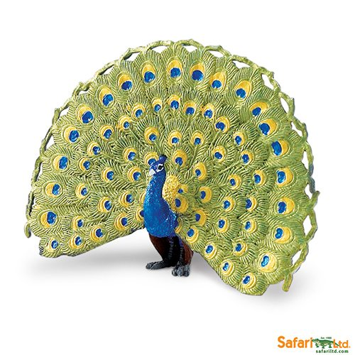 Safari Ltd Peacock (Wings Of The World Birds) 264629
