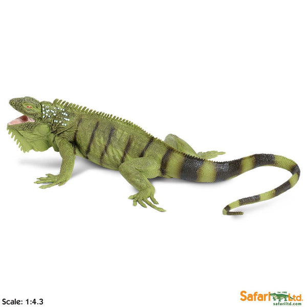 Safari Ltd Iguana Incredible Creatures 267729